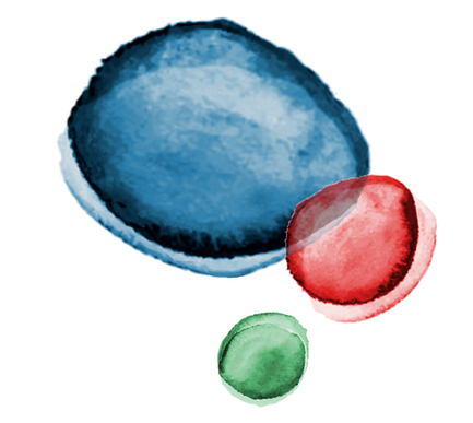 Logo-lesbruitsdelalanterne-bulles-PNG.pn