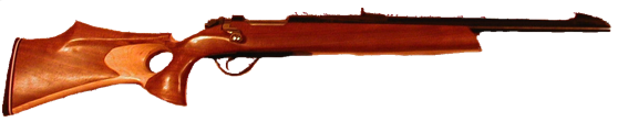 custom 308 win hunting rifle