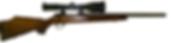 custom 250 ai hunting rifle