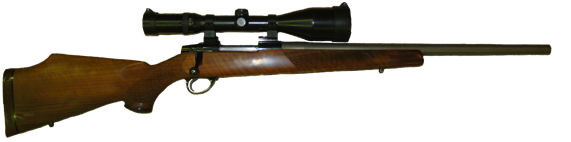 custom 250 ai hunting rifle