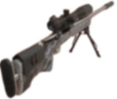 Accurate Shots | Gunsmithing | Great Southern Gun Works | USA