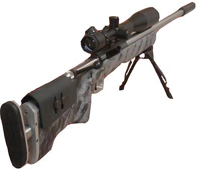 Accurate Shots   Gunsmithing   Great Southern Gun Works   USA