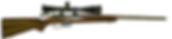 varmint and prairie dog hunting rifle in 19 calhon