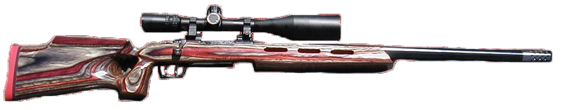 long range competition rifle in 308