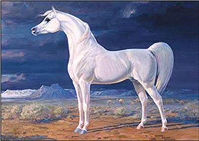 Arabian_Horse_Standard_wv-Border.jpg
