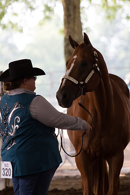 Halter Over 19_Courtney Parry & One Hot