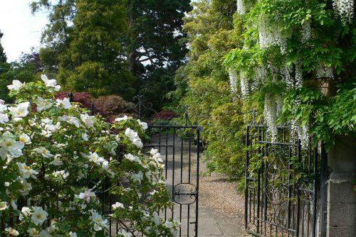 Der englische Garten - The Garden of Thorn