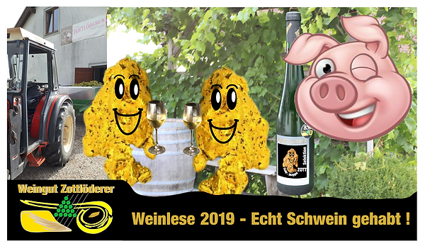 Weinlese 2019 Youtube.png