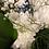 Thumbnail: Gorgeous blue bouquet