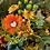 Thumbnail: Autumn Glow