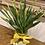 Thumbnail: Daffodil treat