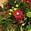 Thumbnail: Funeral / Grave side arrangement