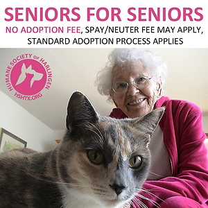 Seniors for Seniors 01.png
