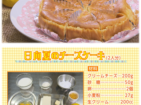 「日向夏チーズケーキ」レシピ紹介!