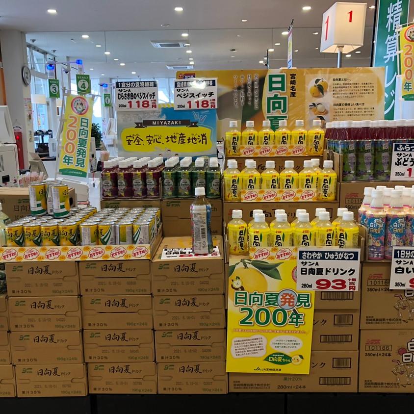 サンA「日向夏」シリーズ商品の特設コーナー!