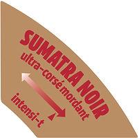 Santropol Flavor Tab Sumatra.jpg