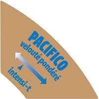 Santropol Flavor Tab Pacifico.jpg