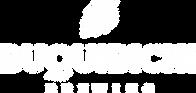 Logotipo con descriptorBLANCO.png