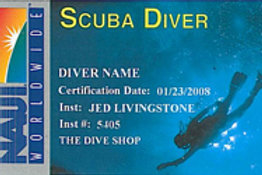 NAUI Scuba Diver Course - Semi-Private (3-4 ppl)