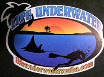 Sticker, Life Underwater Palm Oasis