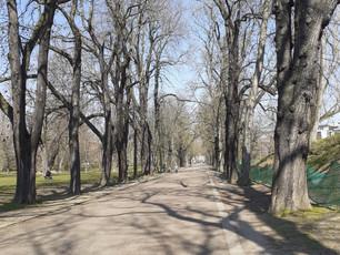 #bleibzuhause - Special:  Der Spaziergang  (5)
