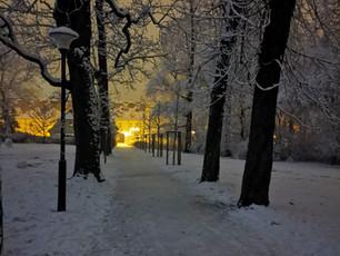 #WinterZuhause: Planitz im Schnee (7)