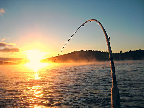 Fishing pole with the line out into the lake
