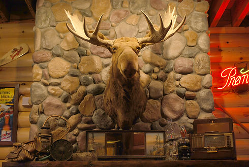 Our Moose mascot above the fireplace