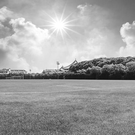 Soccer Field Background