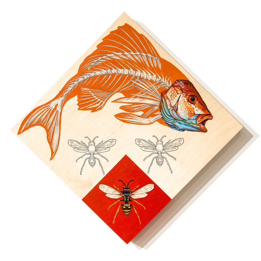 6_Fish&Visitors_Icon.jpg