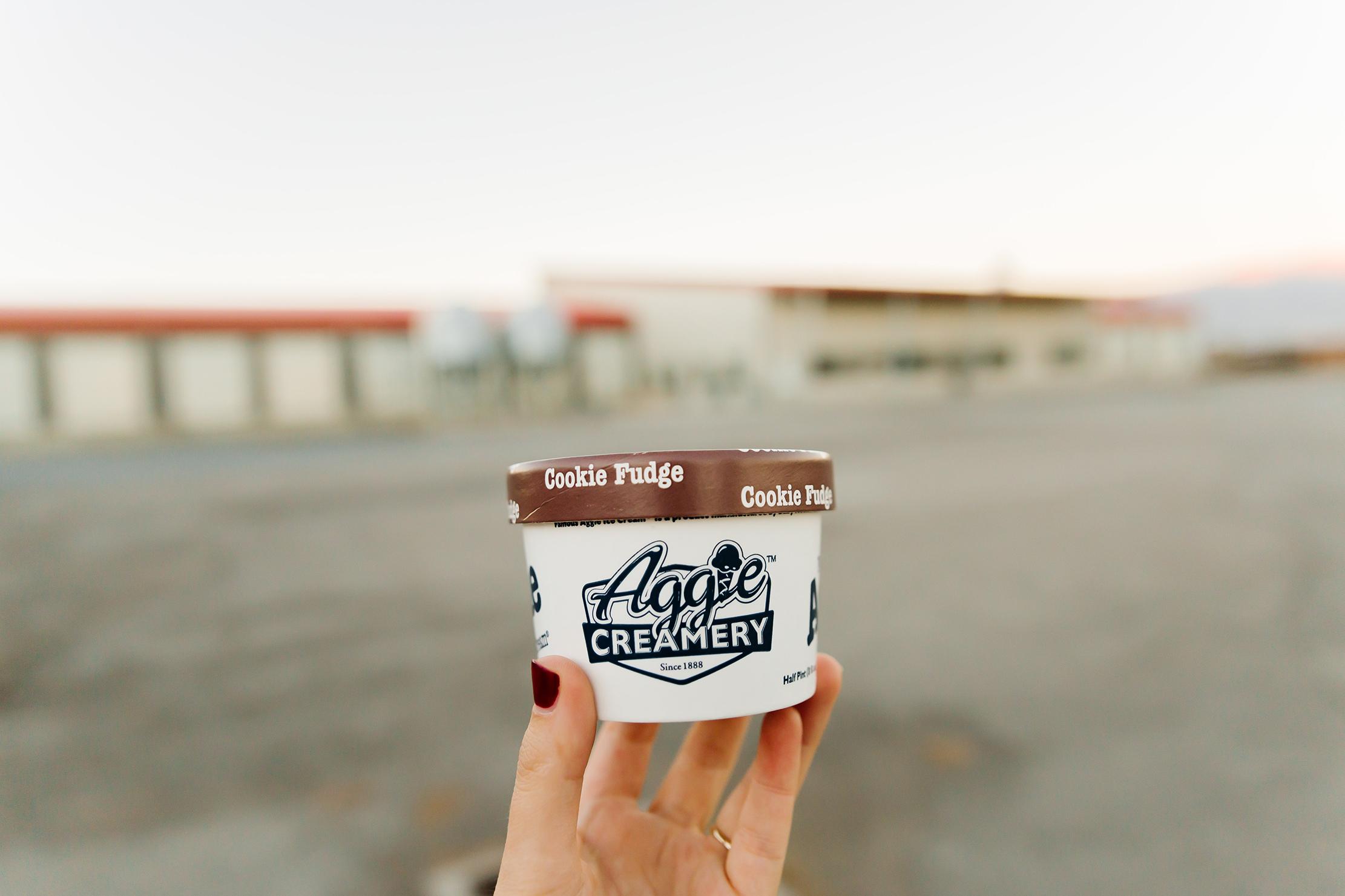Aggie Ice-cream/ Caine Dairy - USU