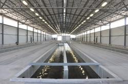 Sringville Fish Hatchery Raceway Interior Center - Springville, UT