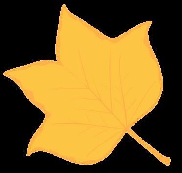 Leaves-tulip.png