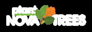 Tree_logo_Green_Web-04.png