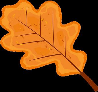 oak leaf.png