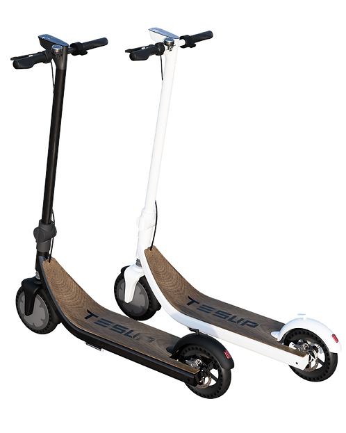 EcoBoost Scooters (Made in Europe)
