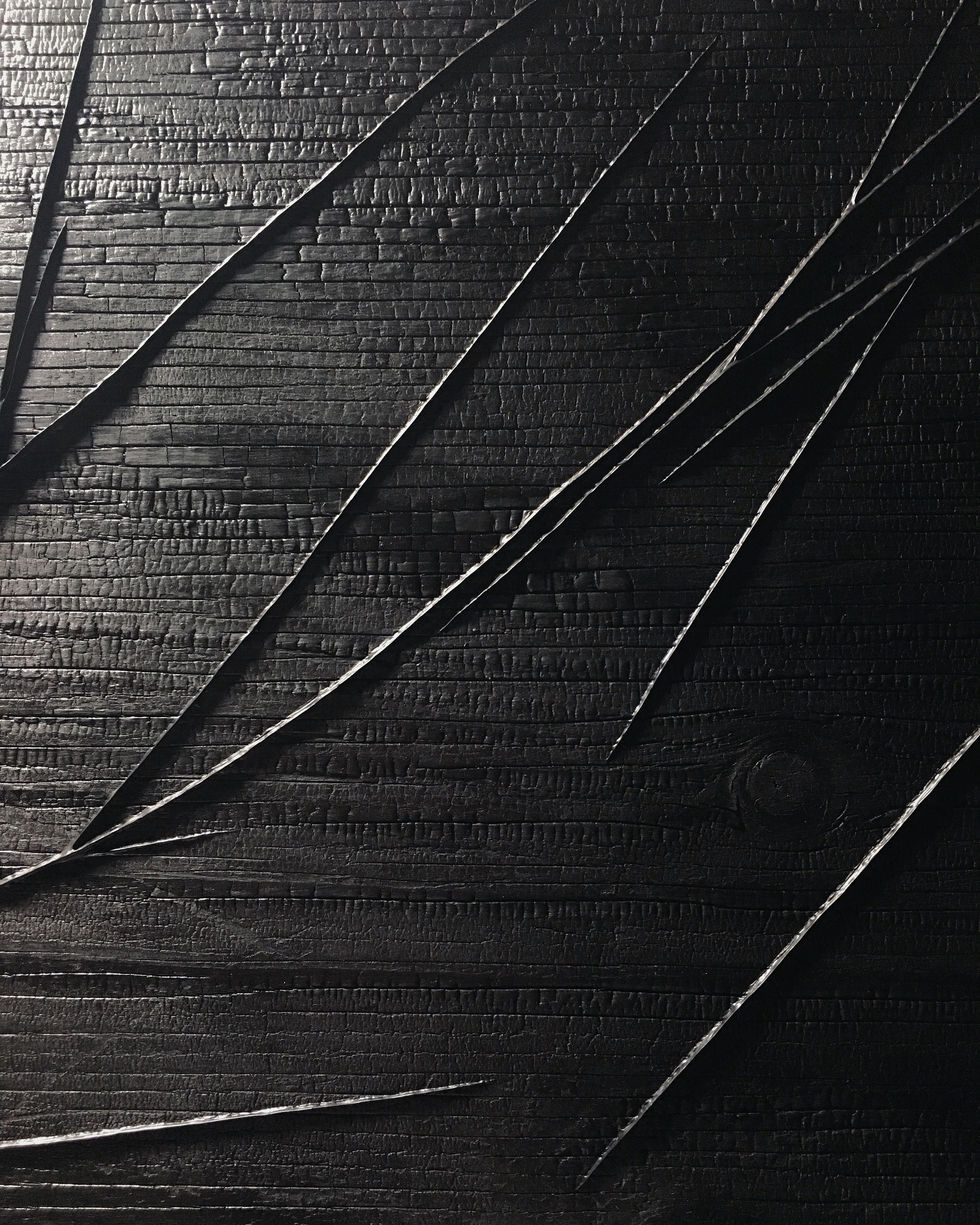 Black on Black | detail