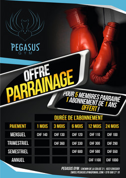 Pegasus Gym
