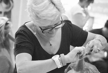 Valérie Coissieux, salon de coiffeur créateur avignon vaucluse