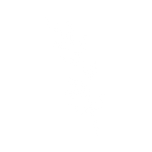 PlantVector_edited.png