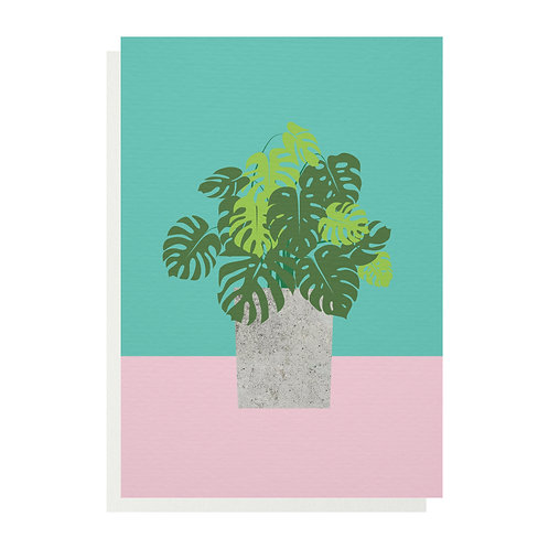 Wholesale | Monstera Plant Greetings Card
