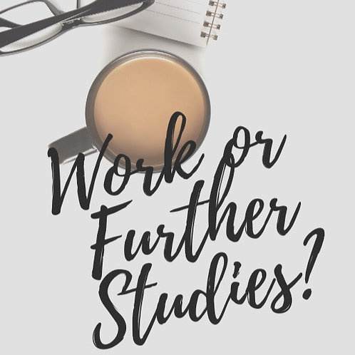 Work or Further Studies: e-book and consultation