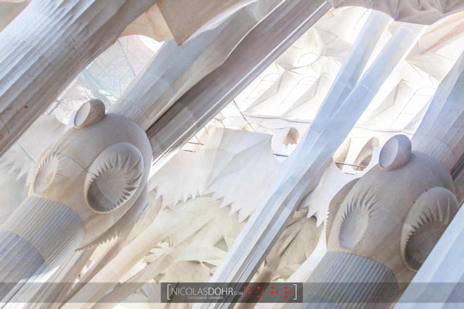 Columns, La Sagrada Familia, Barcelona
