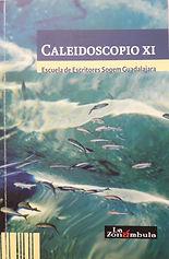 Portada Caleidoscopio XI.jpg