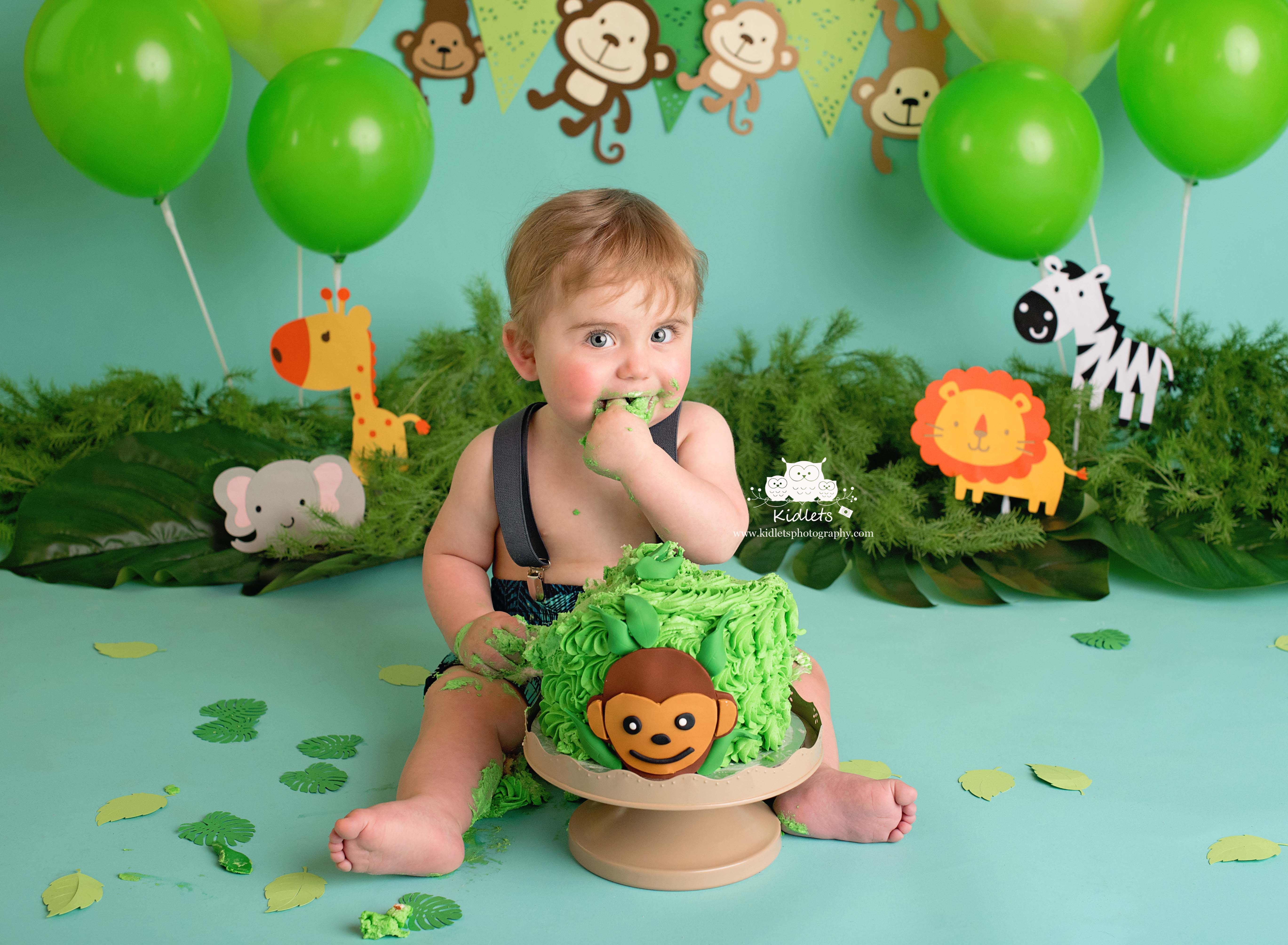Safari Cake Smash
