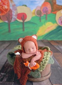 Newborn Session Little Fox