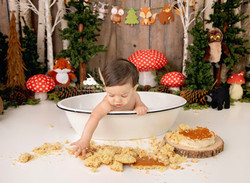 Woodland Cake Smash