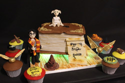 Harry Potter cake /cupcakes