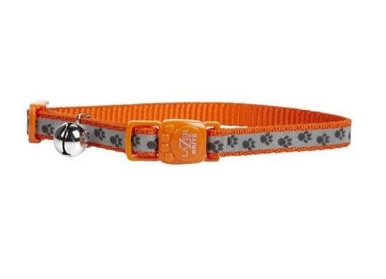 Lazer Brite Safe Collar in Orange