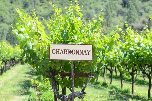 All About Chardonnay March 9 @ 1 PM